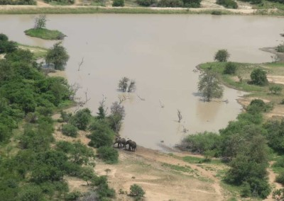 Leading-Edge-Flight-School-Elephants-Side-Dam
